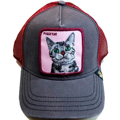 10093176 Goorin Cap Pussy Cat