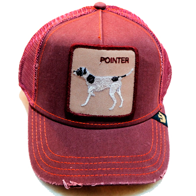 Goorin Cap Pointer